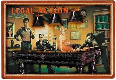 3D SCHILDERIJ LEGAL ACTION 41 X 59 CM